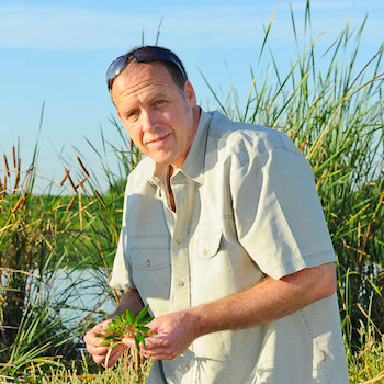 Laurier biologist working on conserving wetlands and building new ones